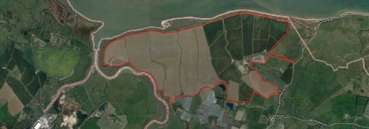 Image for Residents' Concern Over Solar Farm Plans Near Faversham