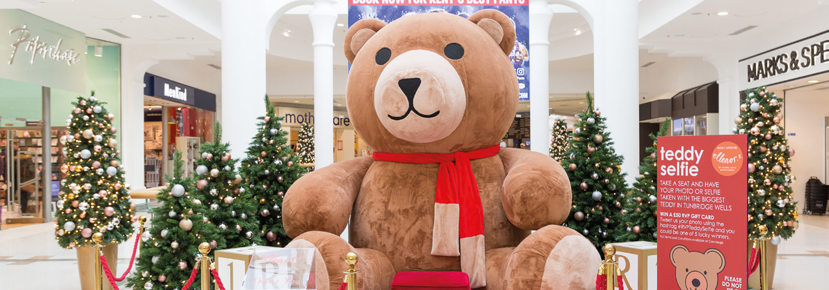 Image for Tunbridge Wells' Teddy Gets A Name